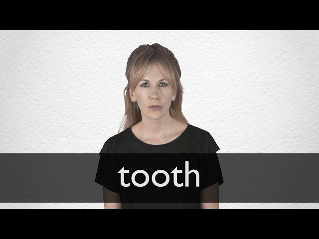 Tooth Definizione Significato Dizionario Inglese Collins