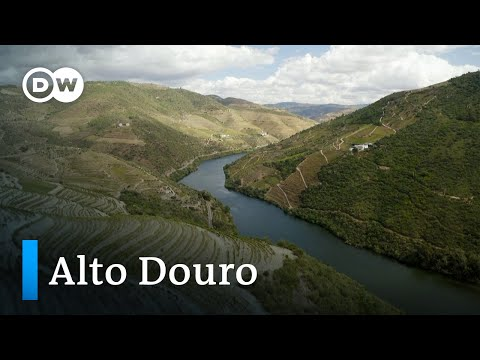 Alto Douro: Die älteste Weinregion der Welt | Euromaxx