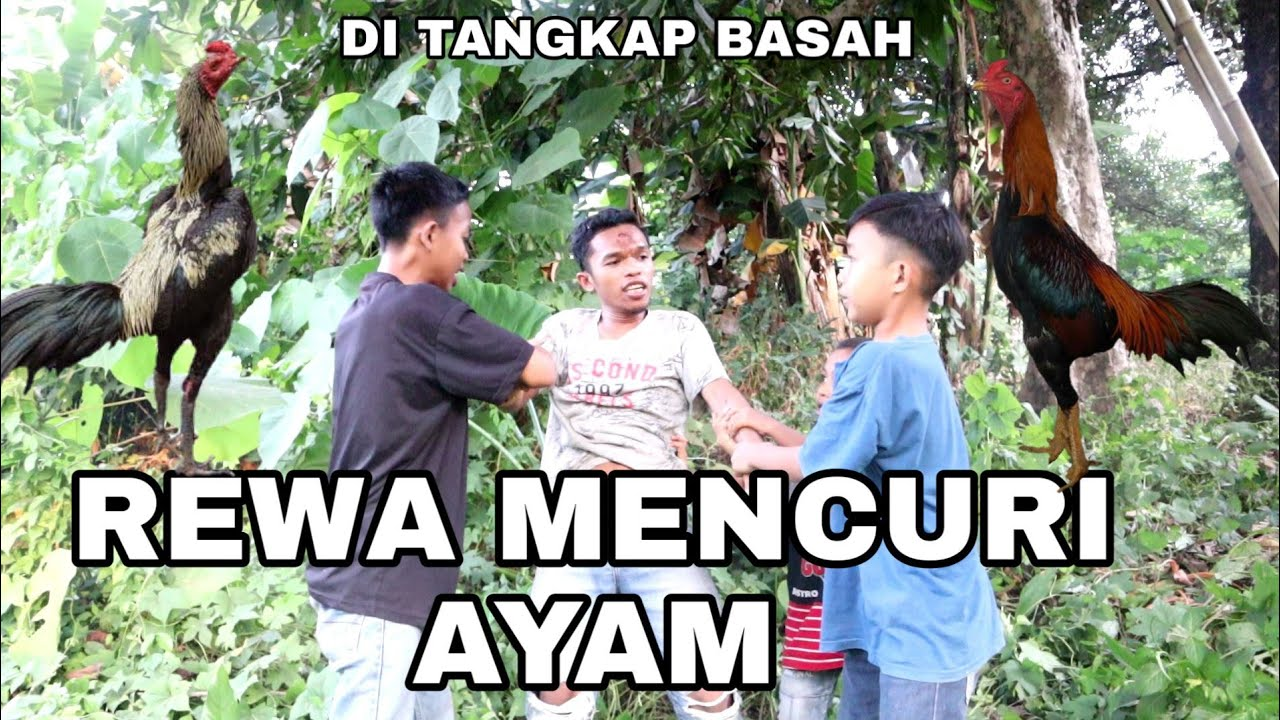 REWA MENCURI AYAM ( Rewa Palukka Jangan )                        Komedi Bugis Makassar