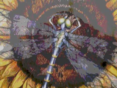 Grateful Dead-Bird Song- Syracuse, NY 10/22/83