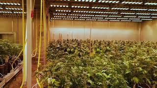 200m² Priestory na pestovanie v interiéri SANlight LED Q6W