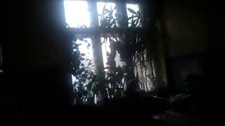 Квартира в аренду для фильмов ужасов