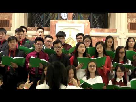 Đêm Giáng Sinh 2016 tại Giáo Xứ Các Thánh Tử Đạo Arlington Texas