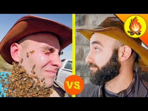 BEE BEARD vs MAN BEARD?