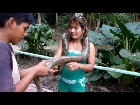 FIESTA DE SAN JUAN 2011 - VIAJE A PUCALLPA - PERU (LA SELVA MARAVILLA NATURAL DEL MUNDO)