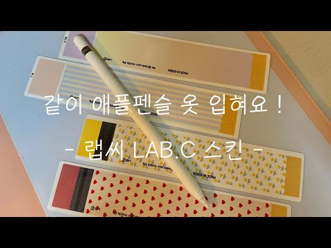 랩씨 LAB.C  애플펜슬 1세대 스킨 ✏️| 같이 애플펜슬 옷 입혀요! | 애플펜슬 악세서리 |솔직리뷰