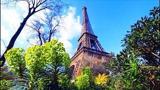 в ПАРИЖ из Брюсселя на ТАЙЛИСЕ 300 км/час - 1 день в самом романтичном городе!