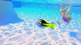 Clearest Pool Water in the World