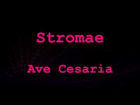Stromae - Ave Cesaria (Lyrics Video * Francia/angol/magyar)