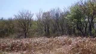 朝鍋鷲ヶ山の山頂から眺める風景 岡山県真庭市