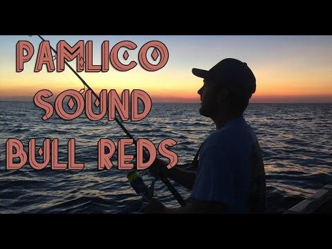 Pamlico Sound Red Drum | KayakingSazzles