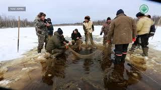 В Мирнинском районе открыли сезон подледной рыбалки на карася