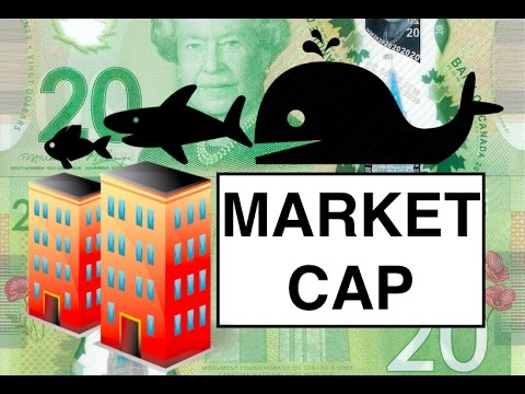 Market Capitalization | Basic Investment Terms #10
