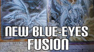 New Blue-Eyes White Dragon Fusion & Effect Monster  - New Cards Revealed!
