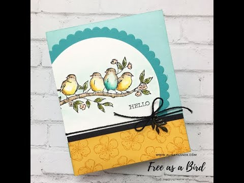 How I Colour The Stampin' Up! Free As A Bird Stamp Set