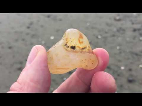Agate Hunting and Identification at Ocean Shores, WA