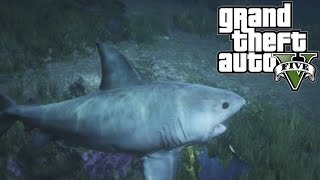 GTA 5 EASTER EGG - Play as a SHARK/WHALE in GTA 5! Peyote! (Grand Theft Auto V PS4 Xbox One)