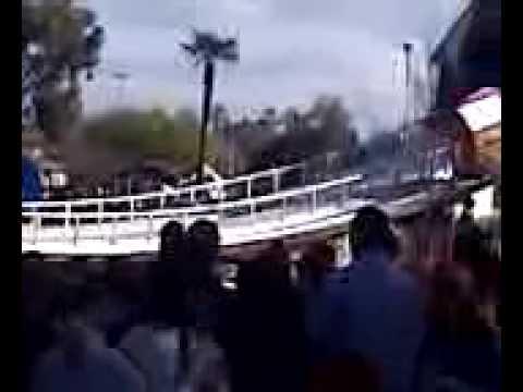 Sledding bulldogs 2010 Rose parade clip 1.3g2