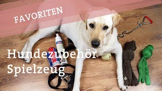 Favoriten: Hundezubehör und Spielzeug / Hundespielzeug Hund Hunde Ikarus Doodle Hundekanal