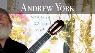 Andrew York - Roasted Green Tea