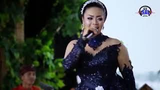 Download lagu Euis SL Daun Puspa MP3