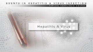 Hepatitis A CDC Viral Hepatitis Serology Training
