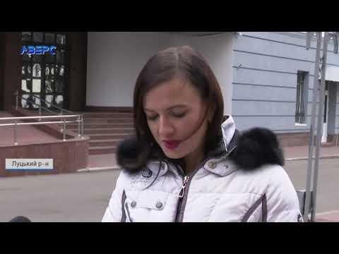 ТРК Аверс: 10 тисяч євро за колоду: на Волині  незаконно рубають дуби у національному заповіднику