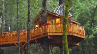 Oddinns- Top 10 Treehouses And Treeresorts
