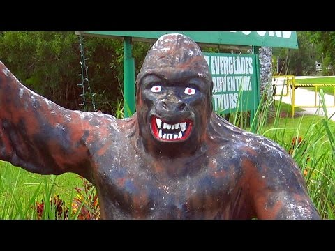 SKUNK APE HEADQUARTERS - Field Trip
