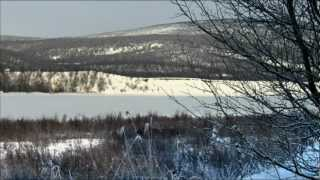 ¨Wild Sweden¨ Look In My Eyes¨ HD 1080 Surround 5.1