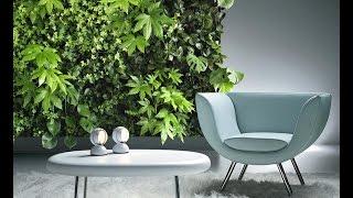 видео Вертикальное озеленение в квартире