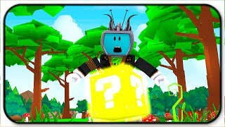 What Mysteries Do These Lucky Blocks Hold - Roblox Lucky Block Battlegrounds