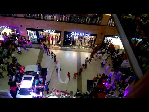 pacific mall dehradun celebration