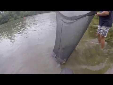 Carp Fishing River Lot