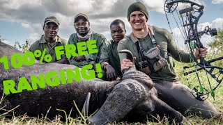 Totally FREE RANGE Cape buffalo W/ a BOW! Mozambique Africa | Bowmar Bowhunting |