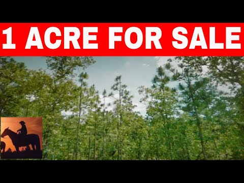 1 Acre For Sale Brooksville Florida Owner Financing