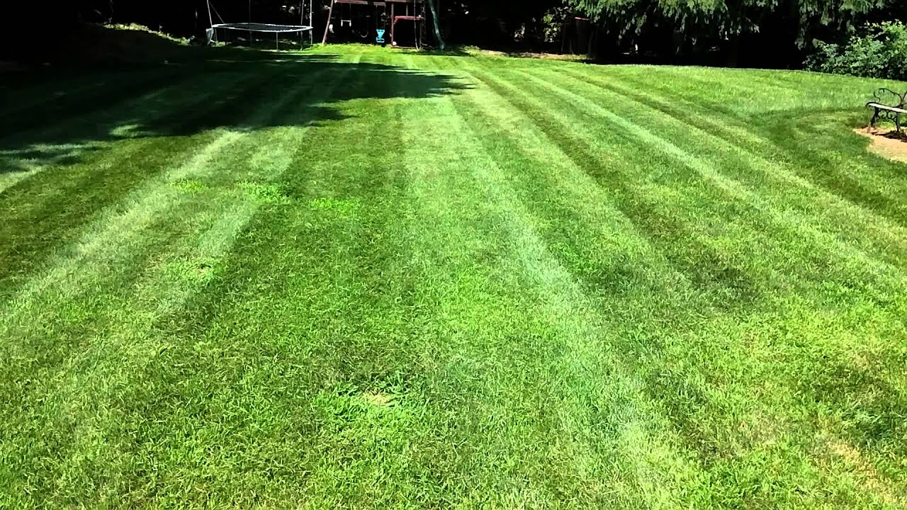 hustler lawn striping