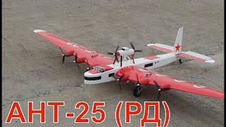 РУ модель самолета АНТ-25 (РД) | RC model airplane ANT-25