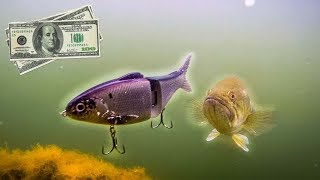 $100 Swimbait SLAMMED By BIG BASS (INSANE FOOTAGE)