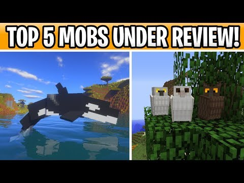 Minecraft 1.15 Mobs That Are Under Review! Kraken Boss, Owls & Orcas?