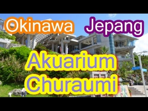 wisata-jepang-:-akuarium-churaumi-dan-berbagai-macam-koleksi-ikannya.-okinawa.-013