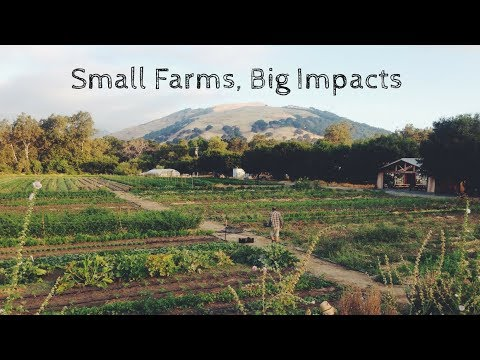 Sustainability Grants Available To Small Farms