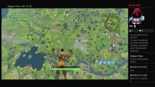 Fortnite(Gameplay) Part 1