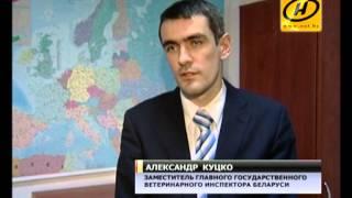 видео Россия запретила импорт мяса птицы из ФРГ