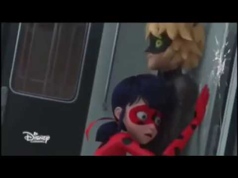 Miraculous Ladybug: Chat purrs & asks for a kiss