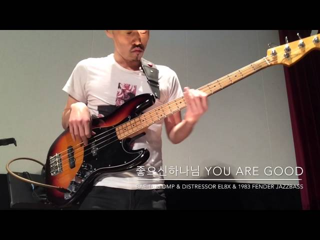 ?????? YOU ARE GOOD - BAE1073DMP & DISTRESSOR EL8X &1983FENDER JAZZBASS