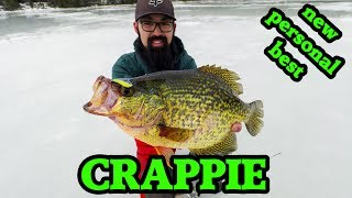 AMAZING crappie ice fishing with NEW TOYS! (z-viber, panoptix, lake x)