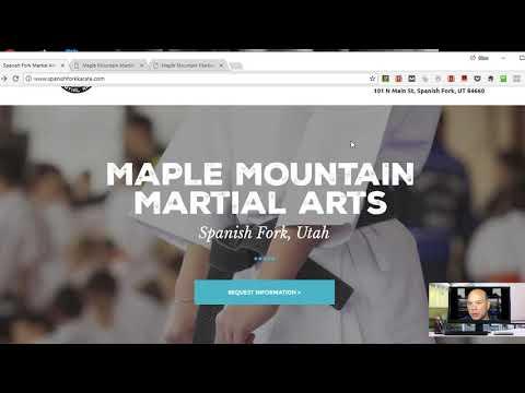Martial Arts Business Online Marketing Audit - Dion Riccardo