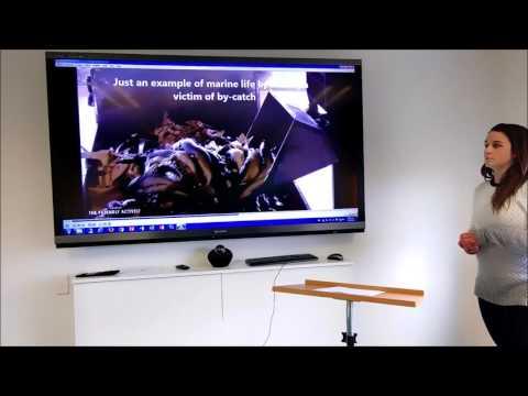 Ocean Life in Antarctica   University of Canterbury Presentation
