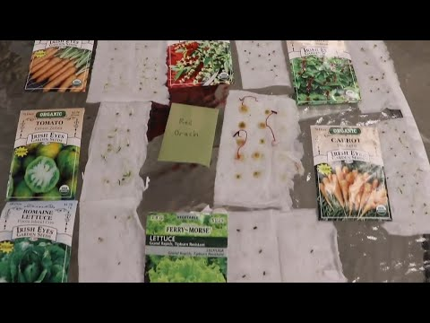 Don't Plant A SINGLE SEED Until You Watch This Video!